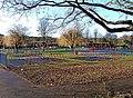 Swings at Riverside Meadows - geograph.org.uk - 1653163.jpg