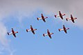 Swiss PC-7 Team 5 (3757052391).jpg