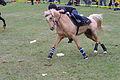 Swiss Pony Games 2011 - Finals - 125.JPG
