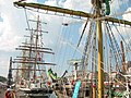 Tall Ships Race Turku.jpg