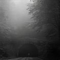 Tanbark ridge tunnel mist.jpg