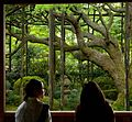The Art of Preserving One's Own Culture and Heritage XXI (KYOTO-JAPAN-SANZEN-IN) (846127360).jpg