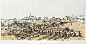 Ontario Agricultural College - The Ontario Agricultural College and Experimental Farm, Guelph, Canada, 1889