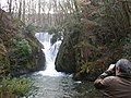 The Waterfall, Furnace - geograph.org.uk - 521723.jpg
