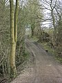 The White Lane, Totley - geograph.org.uk - 1220015.jpg