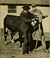 The care of animals - a book of brief and popular advice on the diseases and ailments of farm animals (1905) (14782192692).jpg