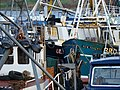 Tightly packed fishing boats - geograph.org.uk - 1020710.jpg