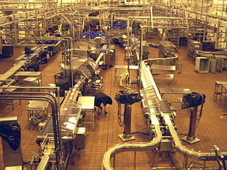 Creamery - Creamery plant with small cheese block processing lines