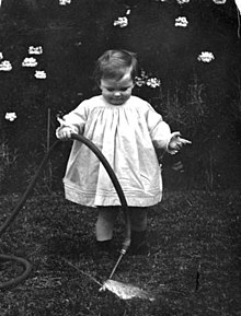 Toddler playing with a hose in a garden (3198305152).jpg
