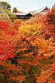 Tofukuji Kyoto02bs4272.jpg