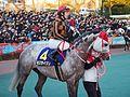 Tokyo Daishoten Day at Oi racecourse (31144312864).jpg