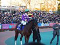 Tokyo Daishoten Day at Oi racecourse (31952389116).jpg