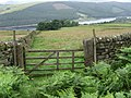 Towards Ladybower Reservoir - geograph.org.uk - 1396894.jpg