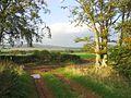 Track junction near Georgefield - geograph.org.uk - 259984.jpg