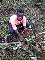 Tree planting 02.jpg