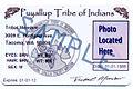 Tribal ID 7.jpg