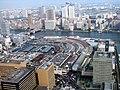Tsukiji view from Shiodome 1.JPG