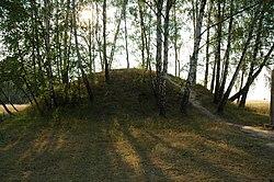 Wrocławscy archeolodzy odkryli w Lesie Muszkowickim (powiat ząbkowicki, gmina Ciepłowody) nieznane dotychczas obiekty, m.in. neolityczne grobowce kujawskie oraz późniejsze kurhany. Badacze wykorzystali prospekcję lotniczą - laserowy skaning LiDAR. Fot. Xanes, lic. CC BY-SA 3.0.