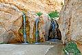Tunisia-4073 - Tamerza Oasis (7849982218).jpg