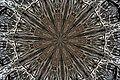 Twisted wooden branches under kaleidoscope Filter.jpg