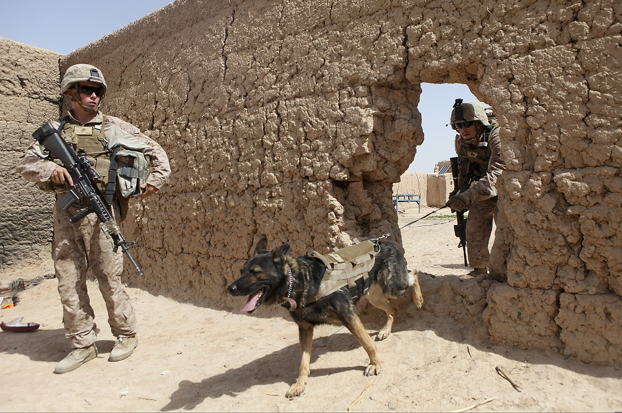 File:U.S. Marine Corps Cpl. Quinton McCloud, right, a dog handler ...