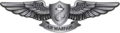 U.S. Navy Enlisted Aviation Warfare Specialist Insignia.png