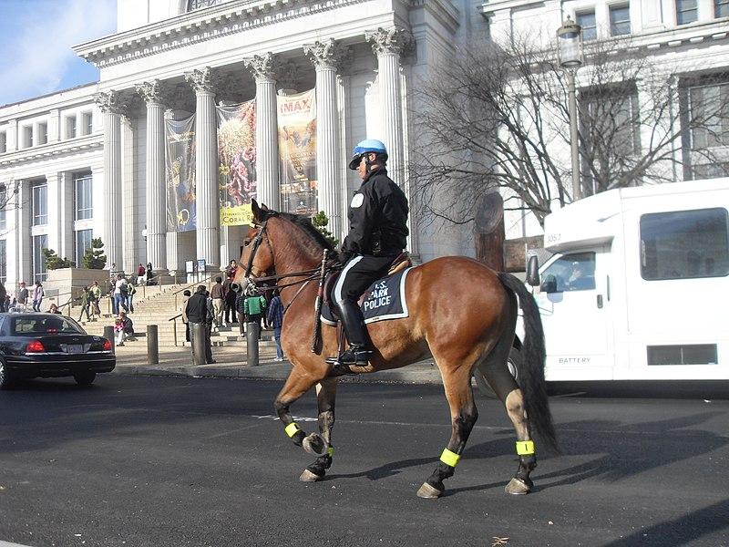 File:U.S. Park Police Mounted Officer.jpg