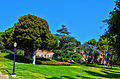 UCLA Campus on lawn.JPG