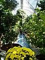 US Botanic Gardens Wade-4.jpg