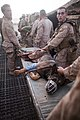 US Navy 110908-M-EU691-042 U.S. Marines from 1st Battalion, 5th Marines, Regimental Combat Team 8, carry an injured bomb-tracking dog.jpg