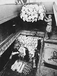Unloading frozen meat from 'Clan MacDougall'.jpg