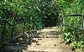 Up the stairs - panoramio.jpg