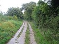 Upper Icknield Way - geograph.org.uk - 581346.jpg