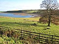 Upper end of the Derwent Reservoir - geograph.org.uk - 282241.jpg