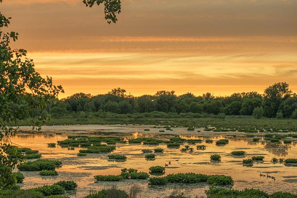 Utica Marsh at Sunset