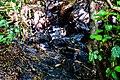 Végétation saxicole polluée par un déversement d'hydrocarbures à Tanguiéta.jpg