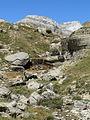 Valle de Aisa, El Rigüelo (Nacimiento del río Estarrún) - WLE Spain 2015 (1).jpg