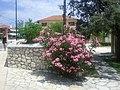 Vasiliki, Greece - panoramio (10).jpg