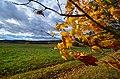 Vermont (6255715822).jpg