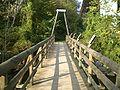 Versoix A1 pedestrian bridge.jpg