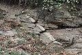 Verwerfung mit Ganggestein in den Karpaten bei Gura Raului.JPG