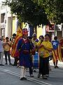 Via Catalana - després de la Via P1200542.jpg