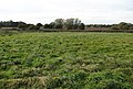 View towards the North Walsham and Dilham canal - geograph.org.uk - 1020829.jpg