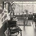 Villa Myrdal 1937a.jpg