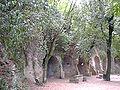 Villa gregoriana 1 990820.jpg