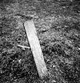 Vintervägsbuan19 Foto L Palmqvist juli 1943.jpeg