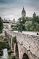 Vista de Salamanca desde el puente romano (33855417773).jpg