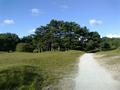 Vlakte van Waalsdorp (Waalsdorpervlakte) 2016-08-10 img. 569.png