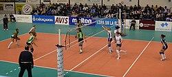 Voleibol Femenino.jpg
