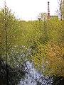 Volodarsk. Spring flood of Seyma River.jpg